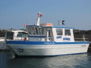 embarcation bateau le dauphin des îles